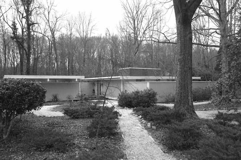 Cohen Fumero House